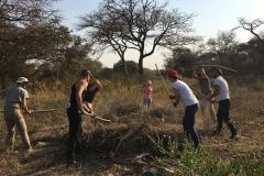 Projekt Zambia 2 Grupowe przy pracy